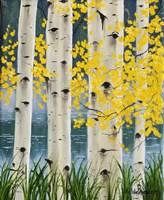 Yellow Aspen Leaves Fine-Art Print