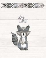 Sleep Bandit Fine-Art Print