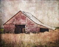 Red Shed Fine-Art Print