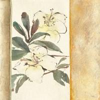 Ochre Rhododendron Fine-Art Print