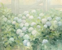 Hydrangea Lane Fine-Art Print