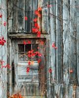 Rustic Autumn Fine-Art Print