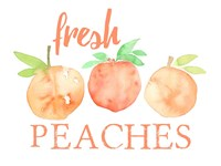 Fresh Peaches II Fine-Art Print