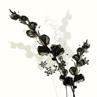 B&W Floral III Fine-Art Print