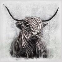 Highlander Fine-Art Print