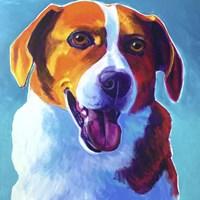 Beagle - Penny Fine-Art Print