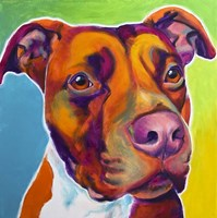 Pit Bull - Red Fine-Art Print