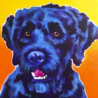Portuguese Water Dog - Banks Fine-Art Print