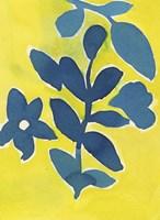 Jardin Amarillo Fine-Art Print