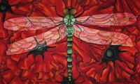 Dragonfly And Poppies Fine-Art Print