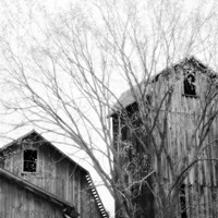 Barn Windows Fine-Art Print