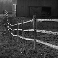 Barn Fence Fine-Art Print