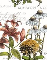 Botanical Postcard Color II Fine-Art Print