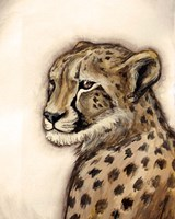 Cheetah Portrait Fine-Art Print