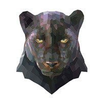 Panther Fine-Art Print