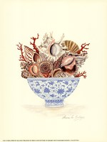 Seashell Collection I Fine-Art Print