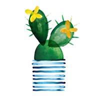 Colorful Cactus I Fine-Art Print