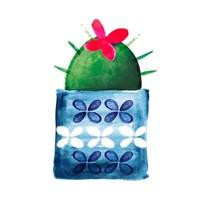 Colorful Cactus IV Fine-Art Print