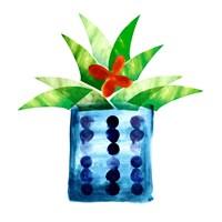 Colorful Cactus VII Fine-Art Print