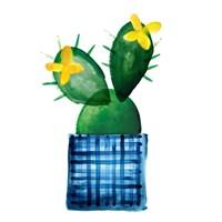 Colorful Cactus VIII Fine-Art Print