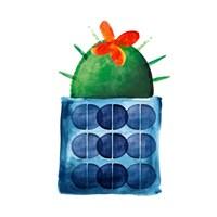 Colorful Cactus VIIII Fine-Art Print