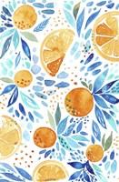 Citrus 2 Fine-Art Print