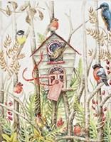 Birdhouse Fine-Art Print