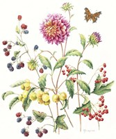 September Dahlia Fine-Art Print