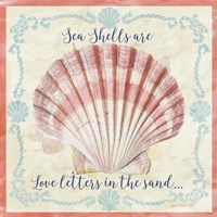 Sea Shells  -  A Fine-Art Print