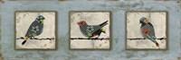 Bird Trio Fine-Art Print