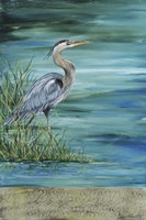 Great Blue - Heron - 2 Fine-Art Print