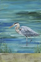 Great Blue - Heron - 1 Fine-Art Print