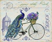Peacock On Bicylce I Fine-Art Print