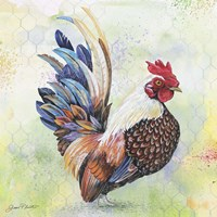 Watercolor Rooster - A Fine-Art Print