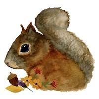 Squirrel Fine-Art Print