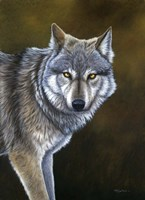 In The Eyes Of The Wolf Fine-Art Print
