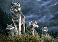 Wolf Pack Fine-Art Print