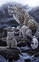 Mother & Cubs Fine-Art Print