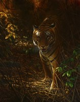 Tiger Odyssey Fine-Art Print