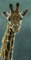 Giraffe Beauty Fine-Art Print