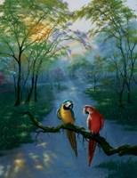 Colors Of The Rainbow Fine-Art Print