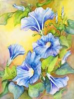 A Morning Glory Vine Fine-Art Print