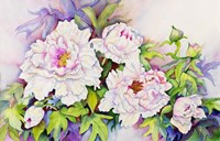 Peonies with Pink Centers Fine-Art Print
