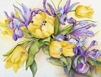 Yellow Tulips with Blue Iris Fine-Art Print