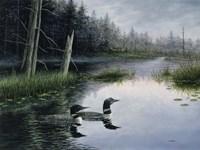 Misty Morn Fine-Art Print