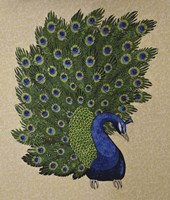 Peacock Stitched Fine-Art Print