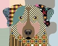 Australian Shepherd Dog Fine-Art Print
