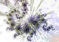 Celestial  copy Fine-Art Print