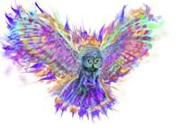 Electric Owl 1 Fine-Art Print