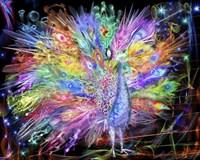 Peacock Nexsus Fine-Art Print